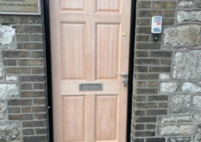 Replacement Door, Merrion Road